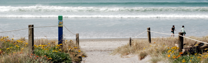 Coromandel Beach in New Zealand
