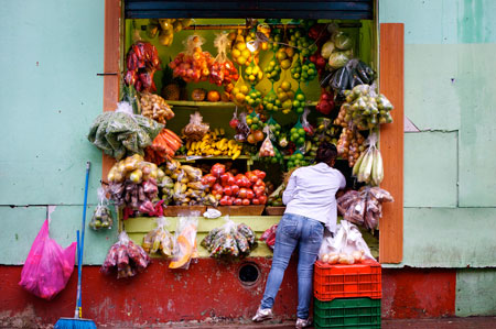 SanJose.CR.2011.Urban_Fruits