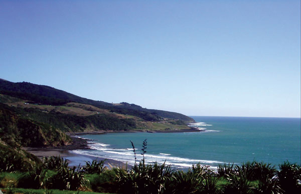 Waikato beaches
