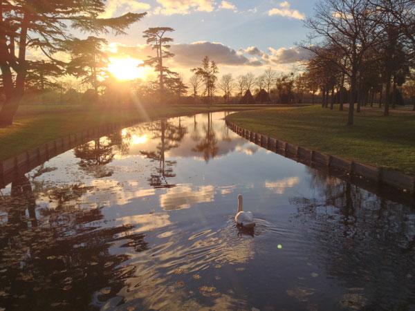 england.london.fall2013.natures_beauty.a_late_autumn_evening_in_the_hampton_court_gardens.robert_schenck