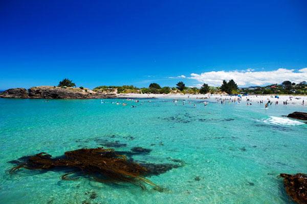 Gavin-Murdoch-Massey---Brighton-Beach,-Dunedin
