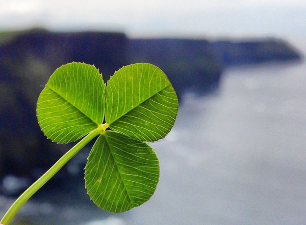 ireland.county_clare.spring2014.instagram.ireland._.madeline_richard