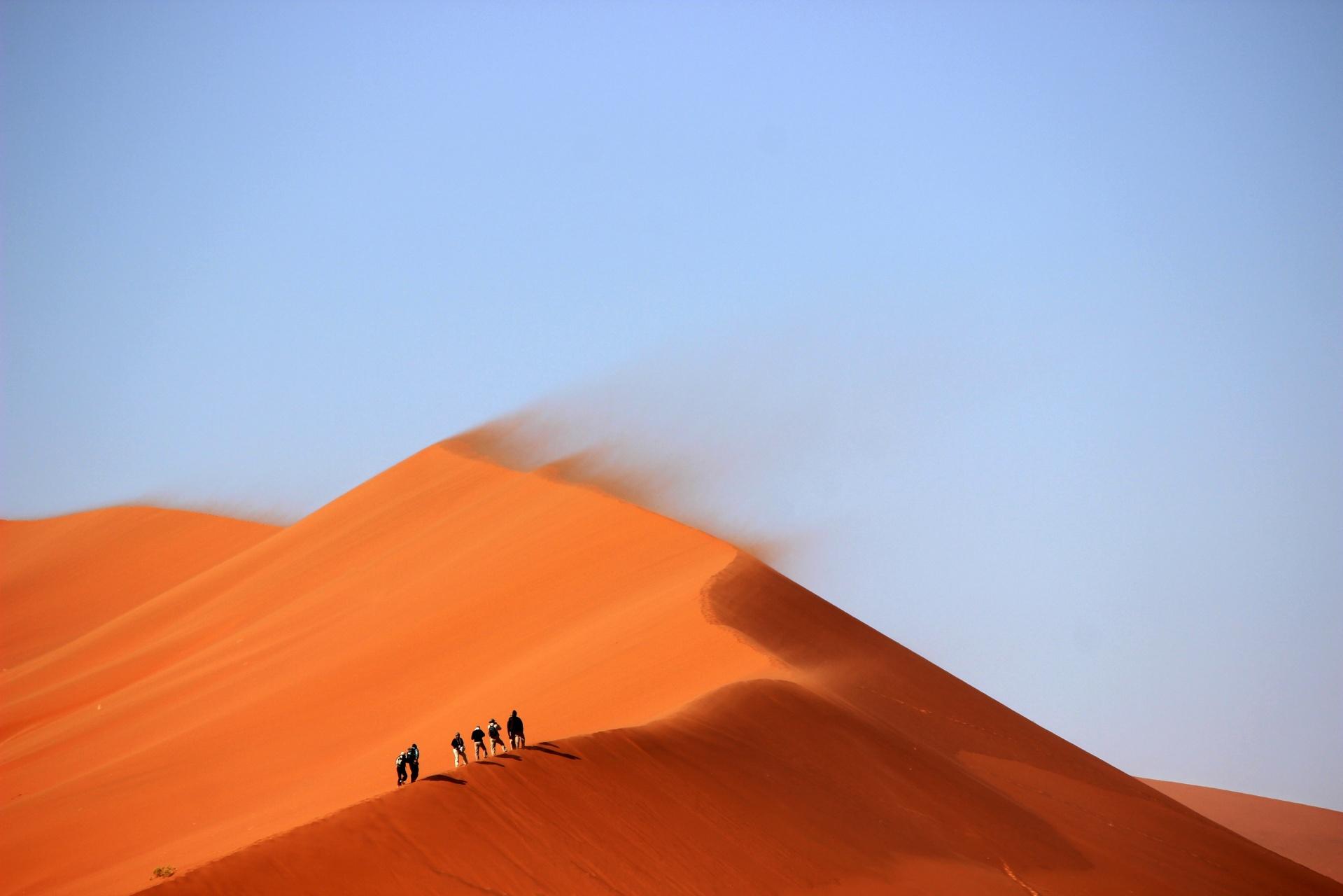 group-on-sand-dune